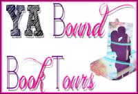 baa7a-yaboundbooktoursbutton