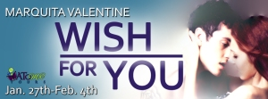 Wish-For-You-Tour-Banner