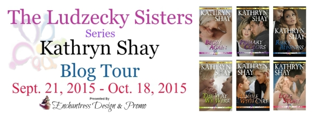 The Ludzecky Sister Series Banner