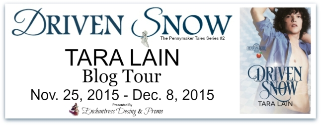 Driven Snow Blog Tour Banner