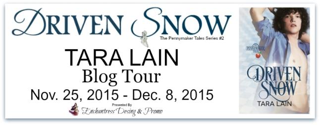 Driven Snow Blog Tour Banner