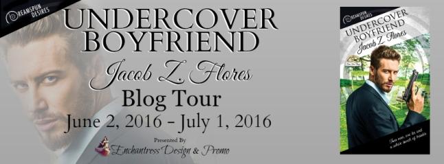 Undercover Boyfriend Blog Tour Banner
