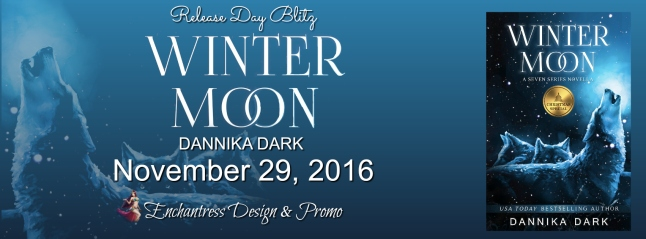 banner-winter-moon-by-dannika-dark
